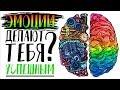 Эмоциональный Интеллект Дэниел Гоулман АНИМАЦИЯ mp3