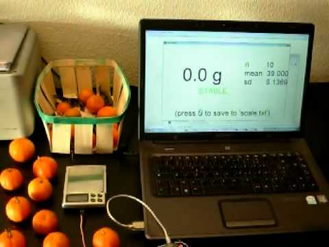 Electronic Scale Interface Pc Youtube