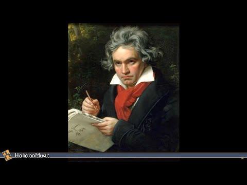Шопен Фредерик - Все произведения для фортепиано Complete Piano Works Рондо ор.1