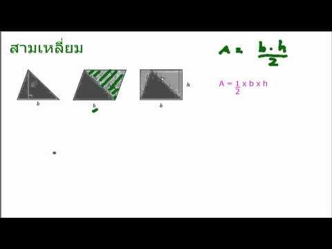 สามเหลี่ยม การหาพื้นที่ เลข ป6 3/3
