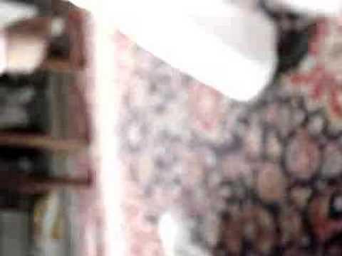 Abiba Qui A Le Style :-p video