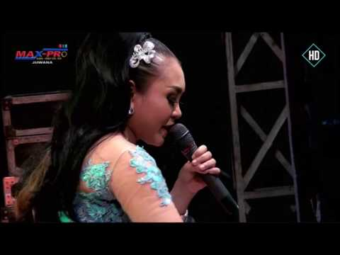 download lagu 13. Cemara Biru - Ani Arlita - New Pallapa gratis