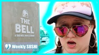 Chit Chat about Procrastination and The Wall of Awful |THE TACO BELL HOTEL 🌮| WEEKLY SUSHI #17 🍣