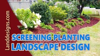 Screening Planting Landscape Design Ideas