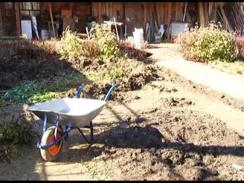 У настоящего садовода и в октябре полно хлопот