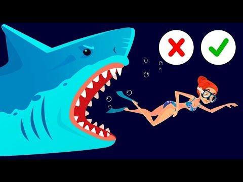 4 Совета о Том, Как Остаться в Безопасности на Море