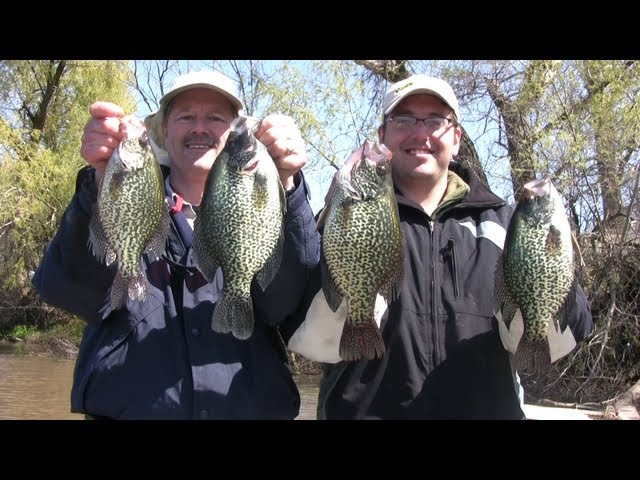 How to Fish for Huge Slab Crappies using Live Bait (Minnows)