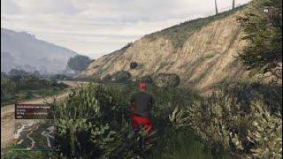 Grand Theft Auto 5 life