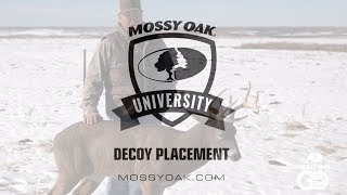 Whitetail Deer Decoy Placement Tips • Mossy Oak University