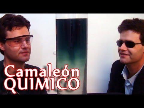 Camaleón químico (Experimento de química)