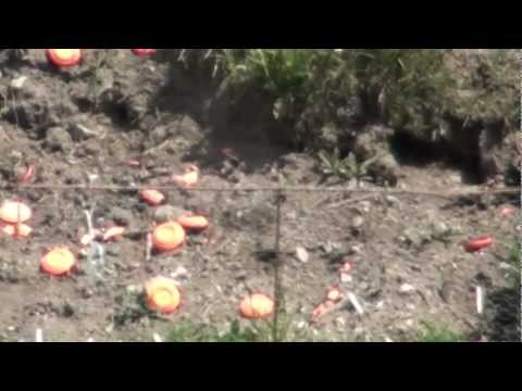 Clay Pigeons at 100 YDS - Glock 20C - Glock 26 - ACR