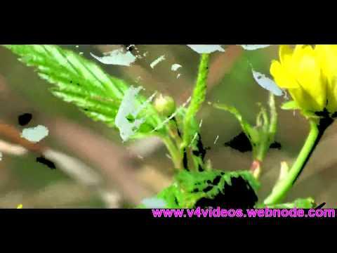 Nadha Ninne Kanan  Christian Song with Lyrics HD