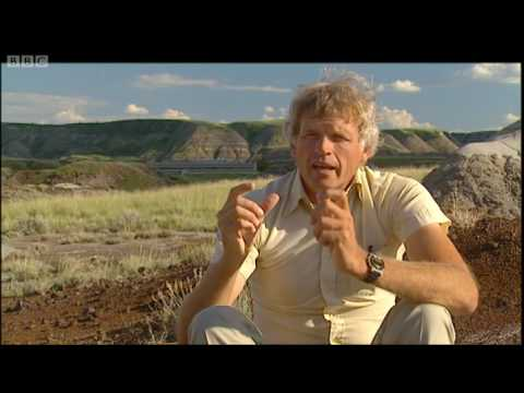 Dinosaur dental work - Extreme Dinosaurs - BBC Video