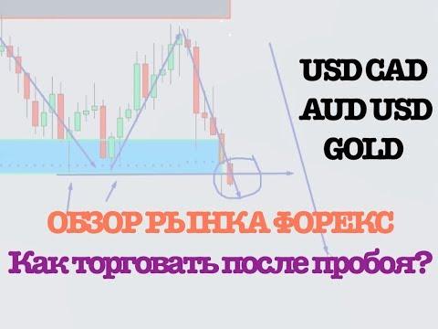 Евро онлайн форекс- alpinanskru