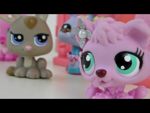 LPS The Life Of BubbleGum Episode 1: The PopRocks