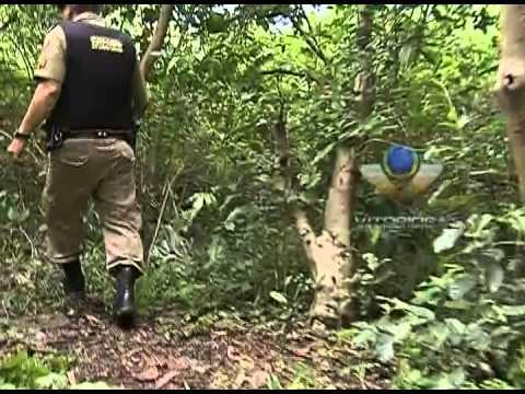 Ossada humana é encontrada em matagal no Pampulha