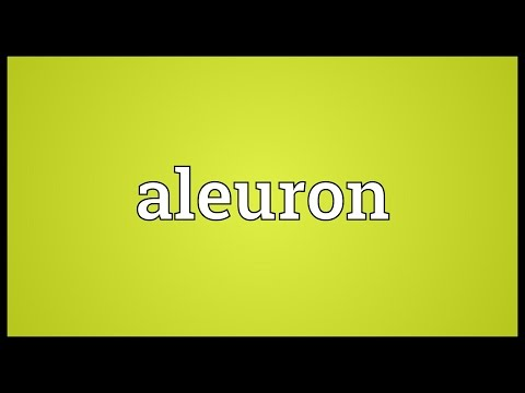 Header of aleuron