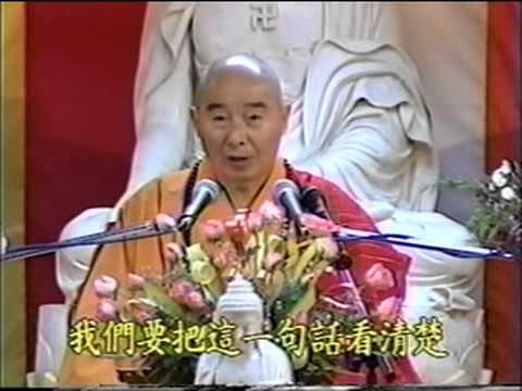 Kinh Vô Lượng Thọ (1994) Tập 10 - PS Tịnh Không