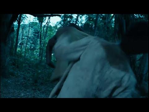 Besouro, o filme: trailer oficial de cinema