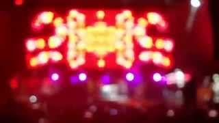 Video Pharrell Williams Lollapalooza