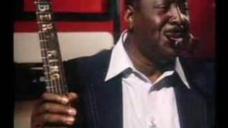 Watch Albert King As The Years Go Passing By video