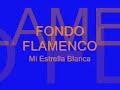 Fondo Flamenco de Mi Estrella Blanca