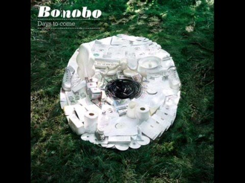 Bonobo - If You Stayed Over