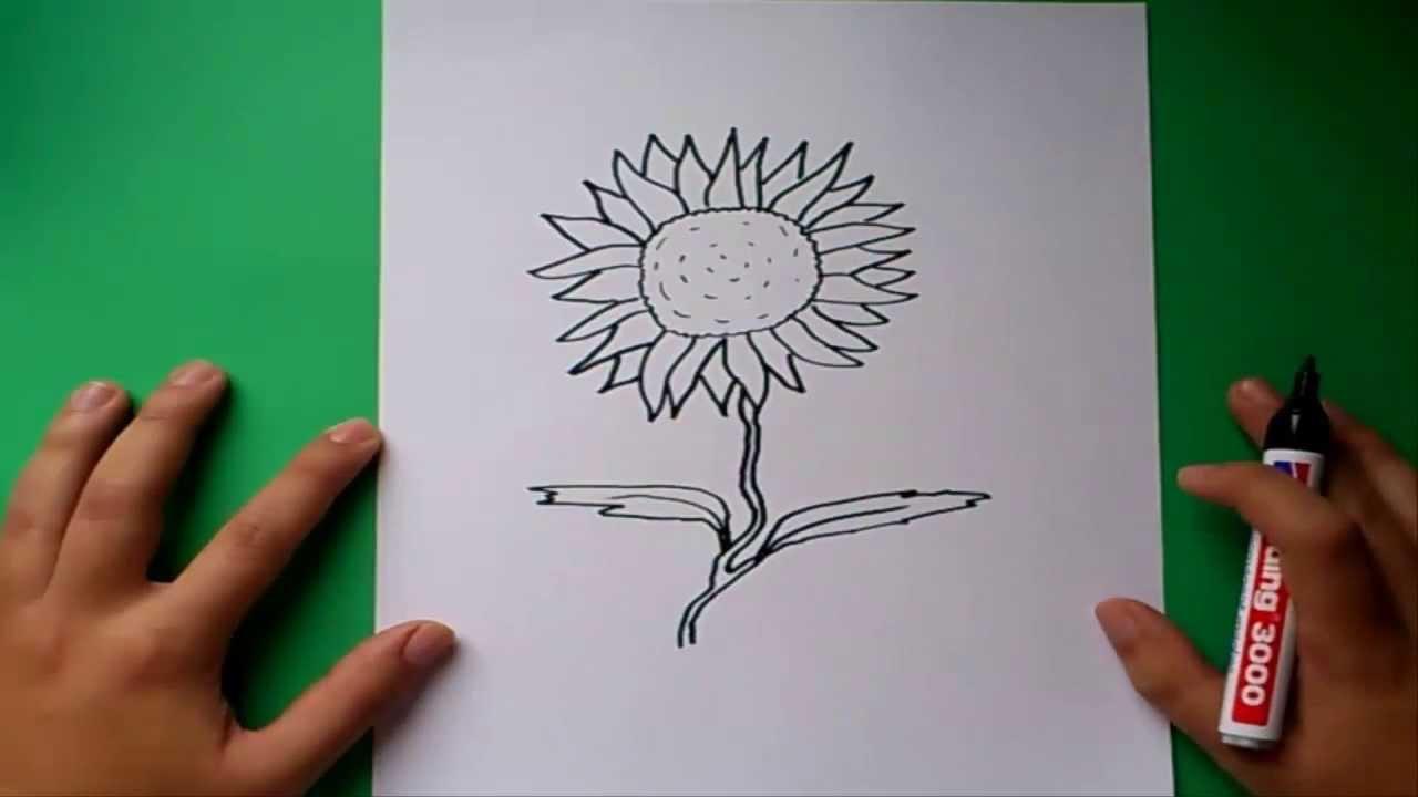 Como dibujar un girasol paso a paso how to draw a for Como disenar un jardin paso a paso