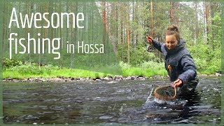 HOSSA National Park – Fish in Finland