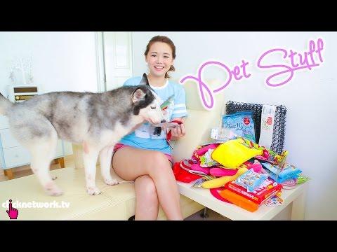 Budget Pet Stuff - Budget Barbie: EP84