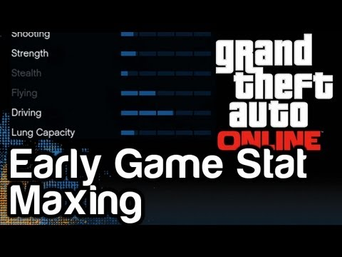 GTA 5 Online Lifestyle & Driving Stat Maxing PRO TIPS   WikiGameGuides