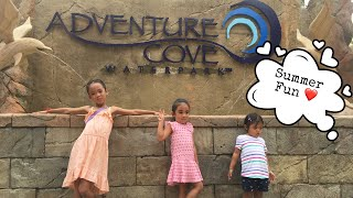 SUMMER SPLASH AT ADVENTURE COVE WATERPARK!