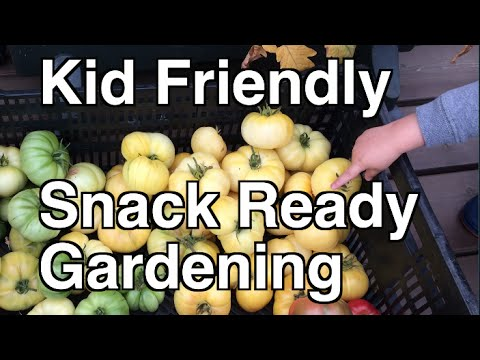 Planning a Kid Friendly Snack Ready Garden