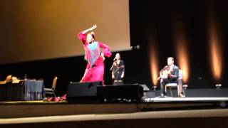 Фламенко, часть 1 / Flamenco show, part 1, ECCOMAS 2014