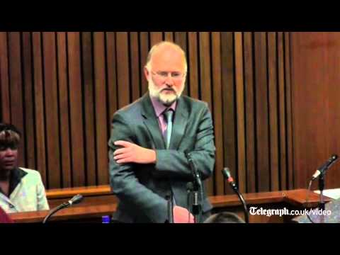 Pistorius trial: Steenkamp's arm amputated by gunshot