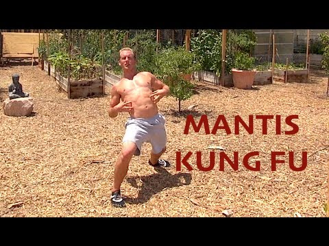 Praying Mantis Kung Fu - AMAZING KATA Image 1