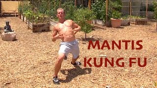 Praying Mantis Kung Fu - AMAZING KATA