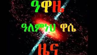 መሠረት መለሰ ለምን ለሞት በቃች - Why Should Meseret Melese Die?