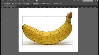 Mesh Tool Illustrator - Banana