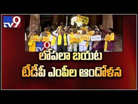 Andhra Special Status : TDP MP's continue to disrupt Parliament - TV9