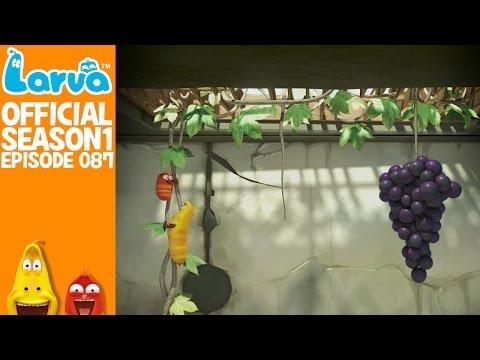 [Official] Grape- Larva Season 1 Episode 87