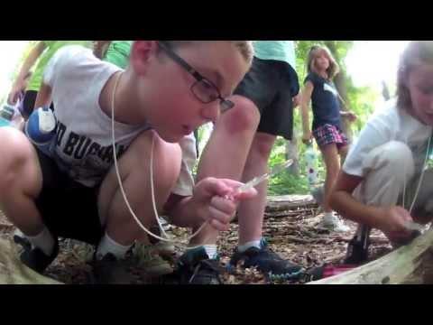Junior Naturalist Camp thumbnail