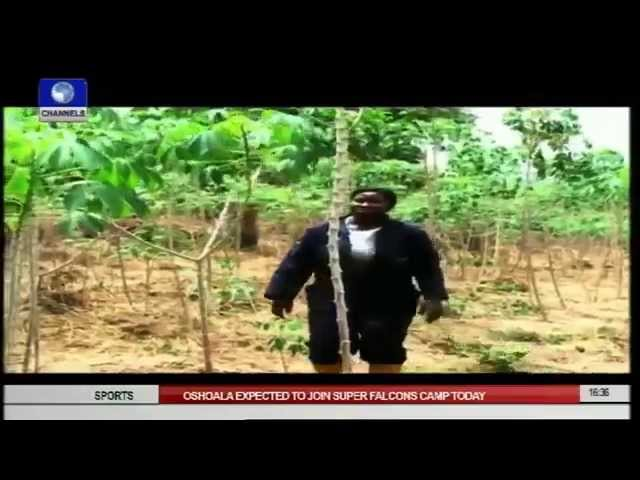 Earth File: Challenges of Farmers In Nigeria Pt1