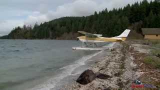 Float Plane Beaching