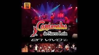 Download lagu LOS CARDENALES DE NVO LEON EN VIVO 2011