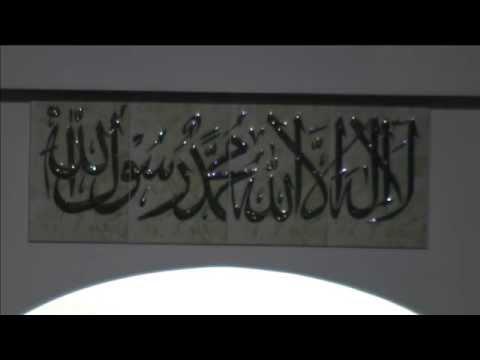 Imam Kashif Aziz- Modesty (3/30/14)