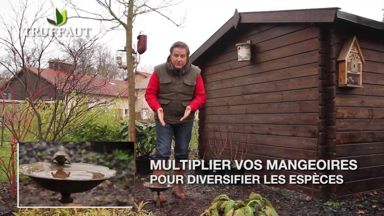 Calendrier Du Jardinier Nos Conseils Pour Jardiner En F Vrier Jardinerie Truffaut Tv Youtube