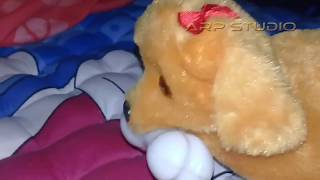 The Sad Story of Friendship Dogs and Giraffes - toys kids dog and giraffe