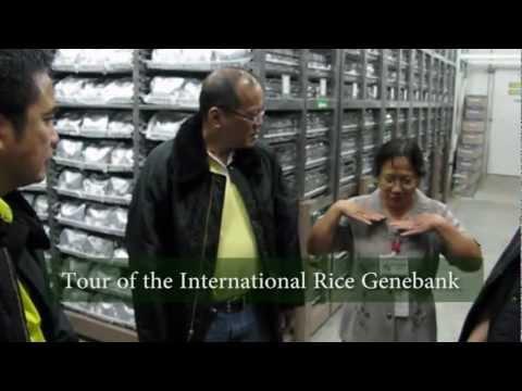 Philippine President Benigno S. Aquino III visits IRRI (short version)