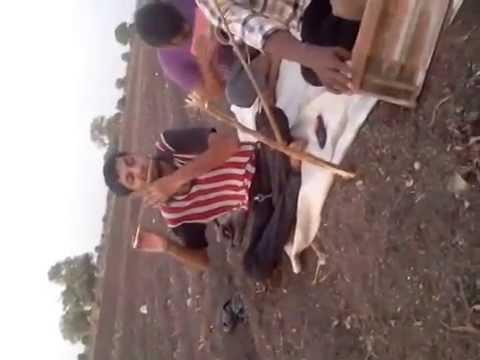 Gujrati Lok Dayro In Farm video